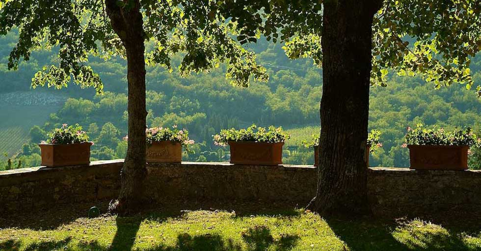 Wine and cooking in the Tuscan countryside